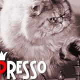 Chess presso Multiplayer Free