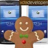 Sony_Ericsson_Xperia_X8__Yendo_y_Cedar_ya_son_oficiales2