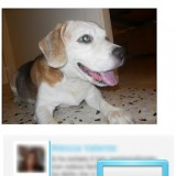 Fast Facebook (Beta) 3