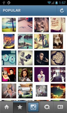 Instagram-7