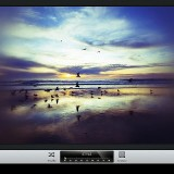 Snapseed-5