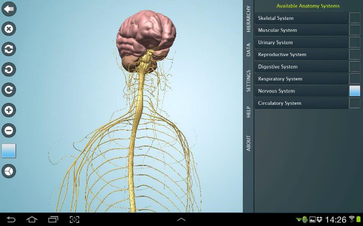 Anatomy 3D - Anatronica Tablet
