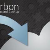 Carbon backup